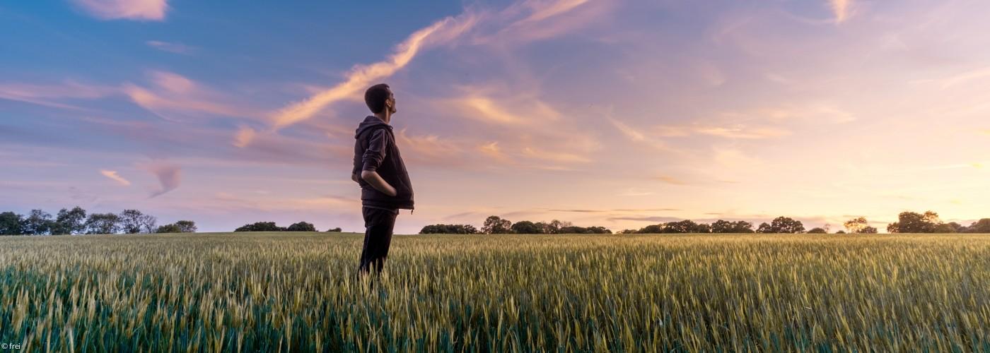 Mann auf dem Feld mit Blick in die Sterne